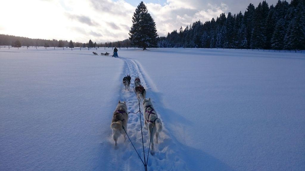 traineau-hiver1r